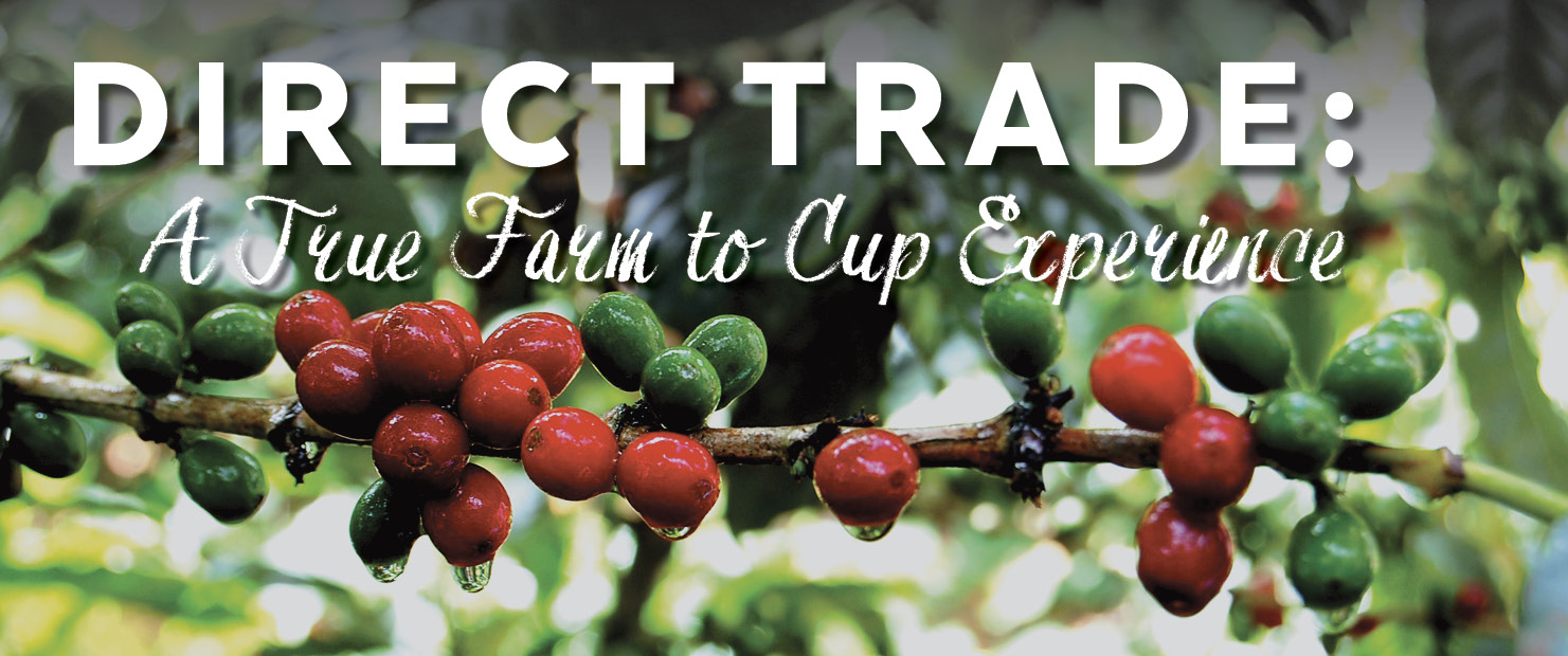 Direct Trade Coffee.  True farm to cup experience.